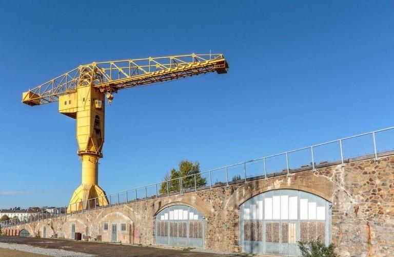 Grue jaune Nantes